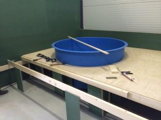 een weekbak en een spoelbak van 5 meter bij 20 meter voor zon klaar gemaakt speciaal op de wensen van de opdrachtgever later helemaal met epoxy waterdicht en afgewerkt